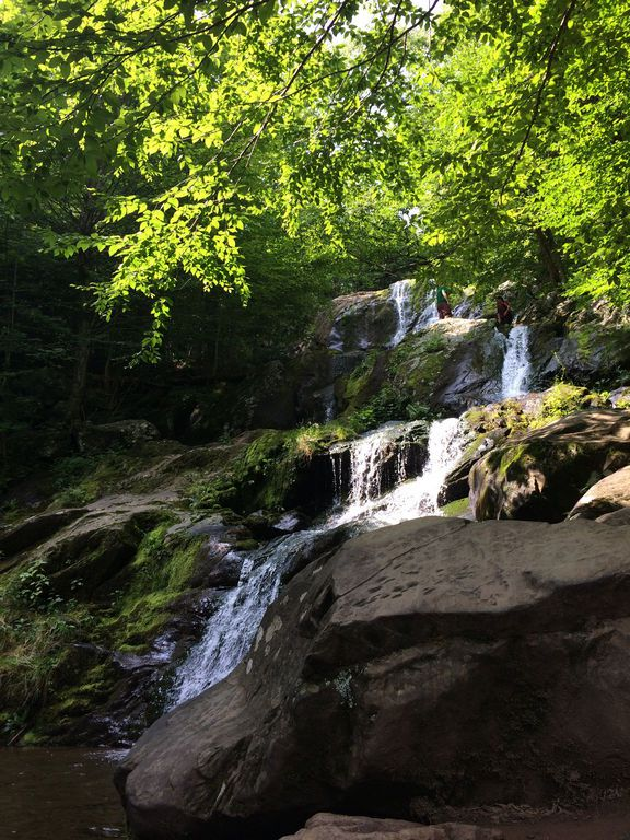 Shenandoah: Dark Hollow Falls Trail