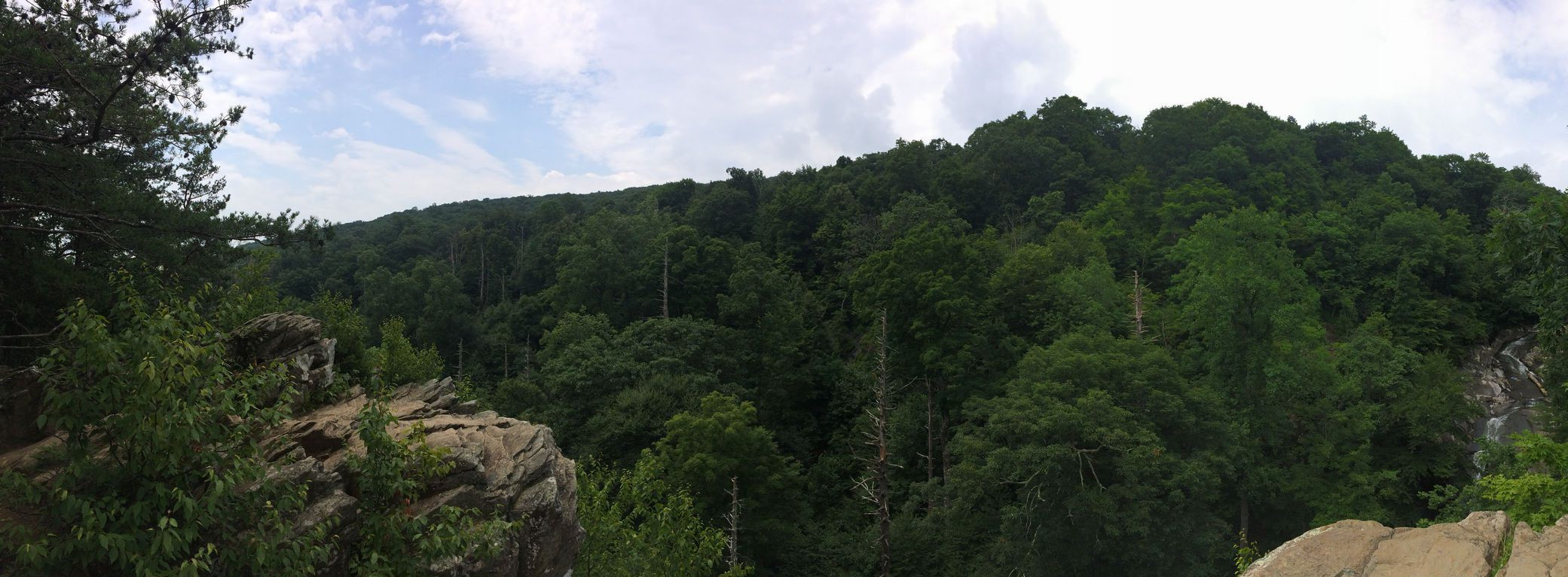 Shenandoah: Whiteoak Canyon Trail (Half)