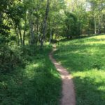 Shenandoah: Mill Prong and Laurel Prong Trail