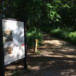 Shenandoah: Dickey Ridge South Area