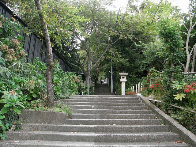 伊豆山神社の階段