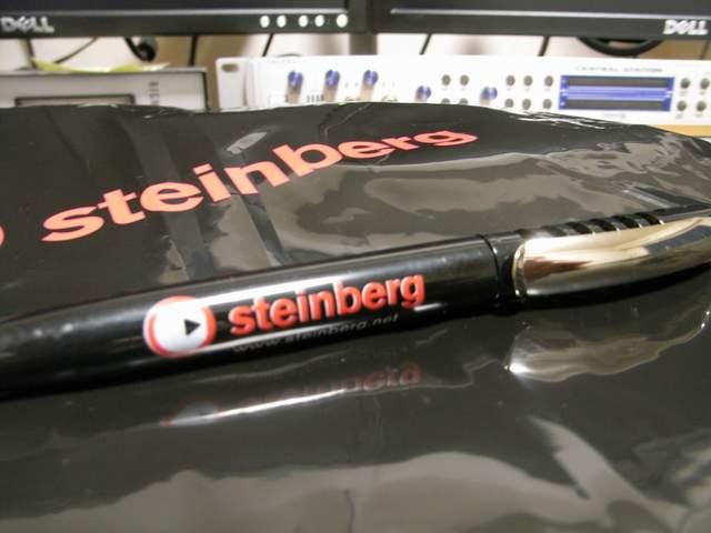 Steinberg Day 2009