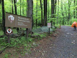 Shenandoah: Robertson Mountain Trail